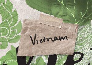 Vietnam T-learning