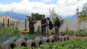 transgressive learning community vegetable garden