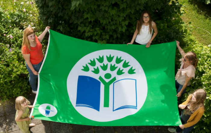 transgressive learning green flag certification