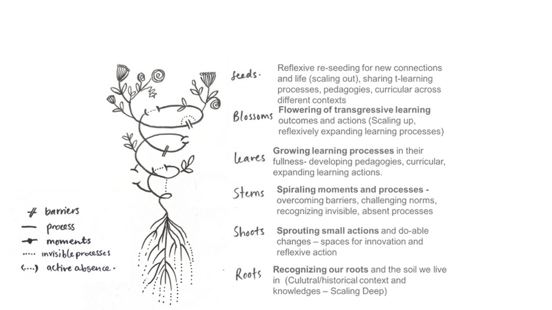 transgressive learning theory of change